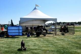 Rental frame tent at Future Farm Expo in Olds, Alberta